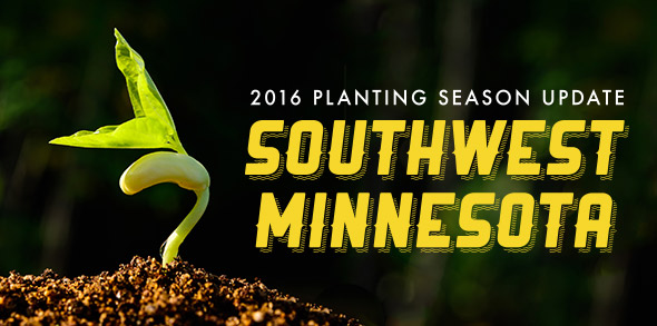 2016 Planting Season Update: Southwest Minnesota