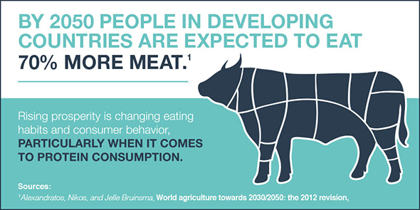 People in developing countries are eating more meat