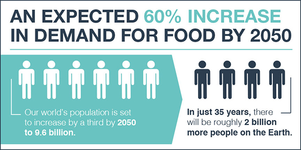 Expected 60% increase in food demand by 2050