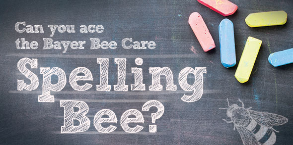 Can you ace the Bayer Bee Care Spelling Bee?