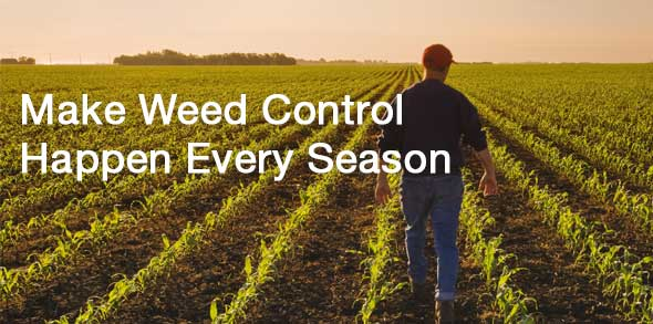 Make weed control happen every season