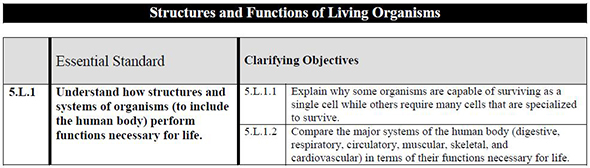 Structures and Functions of Living Organisms Info Sheet