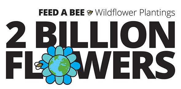 Bayer Feed a Bee has helped plant 2 billion flowers in 2016