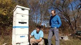 beekeepers with bees