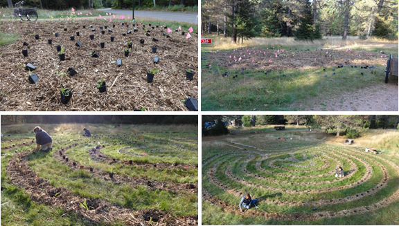 Oneida County planted a Native Wildflower Labyrinth at the Healing Nature Center in Wisconsin.
