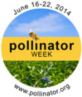 The Pollinator Partnership headquartered in San Francisco, California
