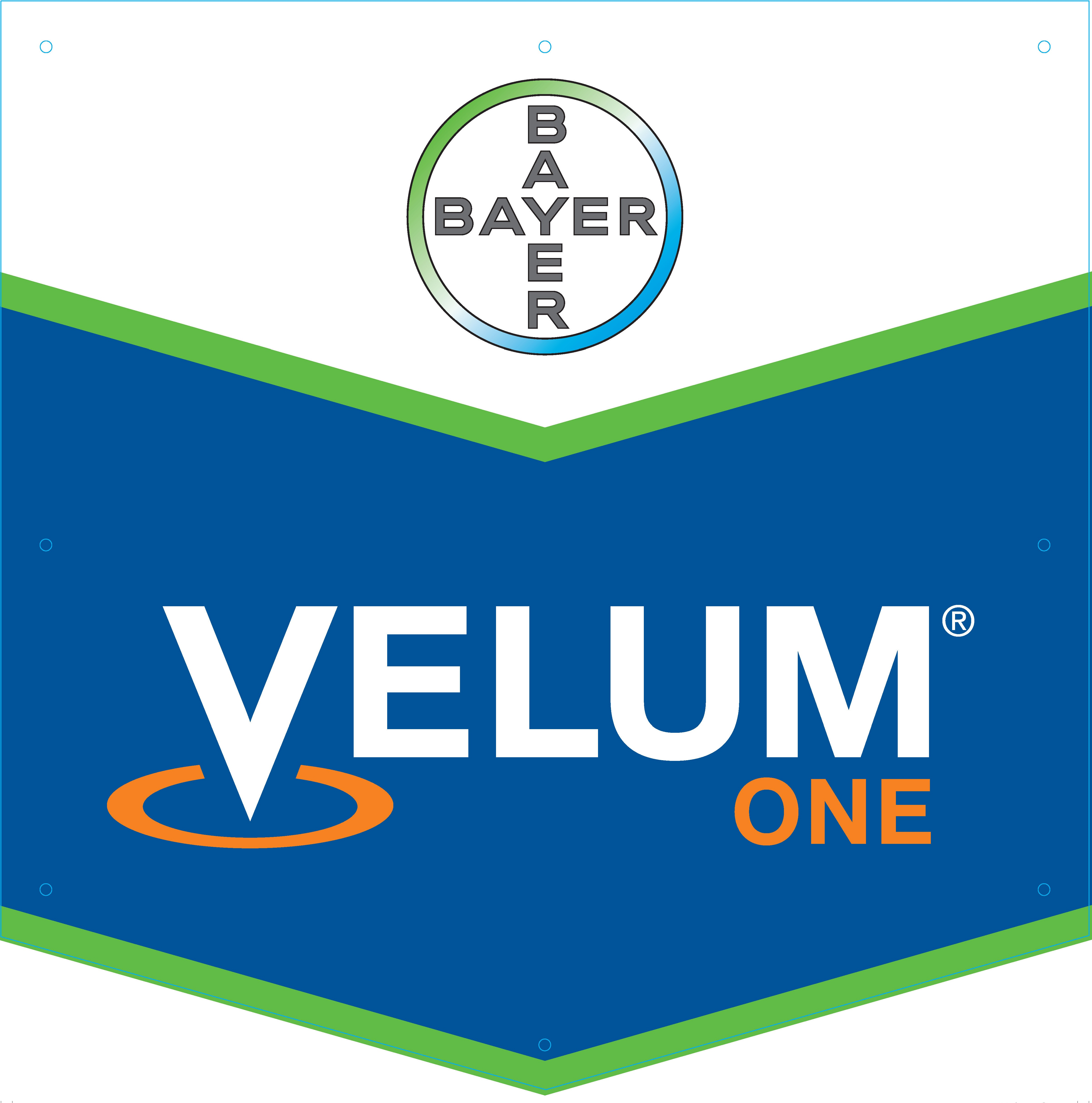 Bayer Velum One logo