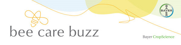 Bee Care Buzz Banner