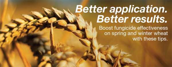 Boost fungicide effectiveness on spring and winter wheat