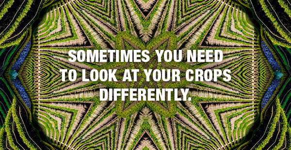 Look at crops differently