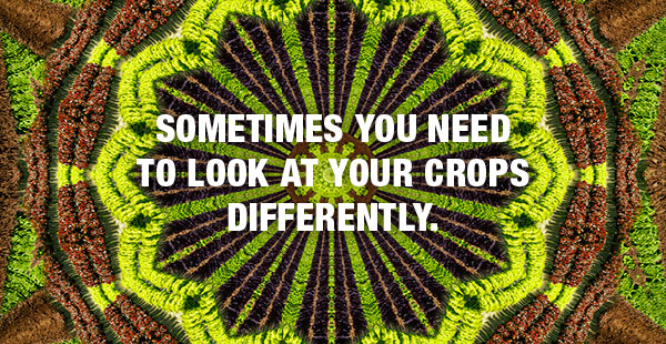 Look at your crops differently