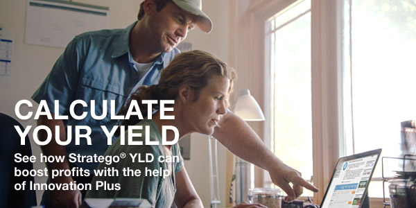 Calculate your Yield. See how Stratego YLD can boost profits with the help of Innovation Plus
