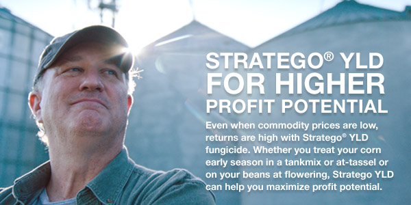 Stratego YLD For Higher Profit Potential