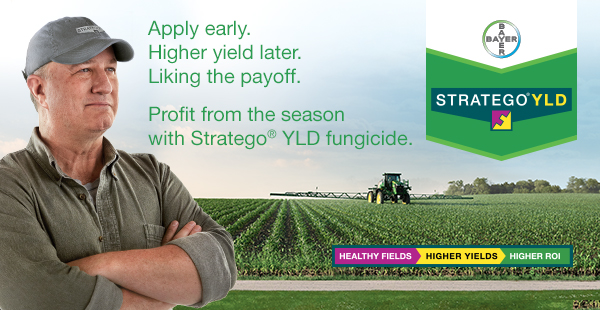 Profit from the season with Stratego YLD
