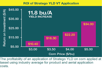 R.O.I. pf Stratego YLD Soybean Application