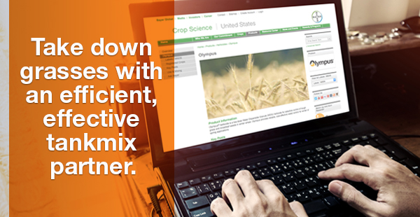 Take down grasses with an efficient, effective tankmix partner