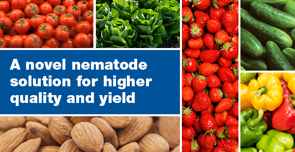 A novel nematode solution for higher quality and yield