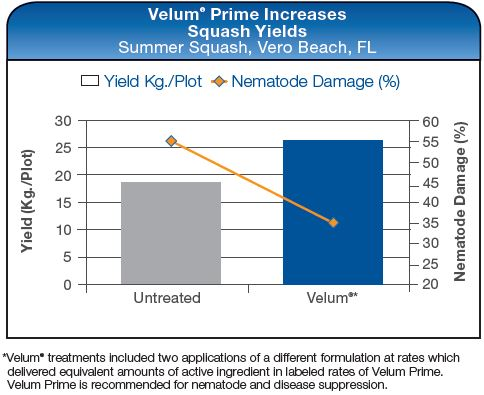 Velum Prime Increases Squash Yields