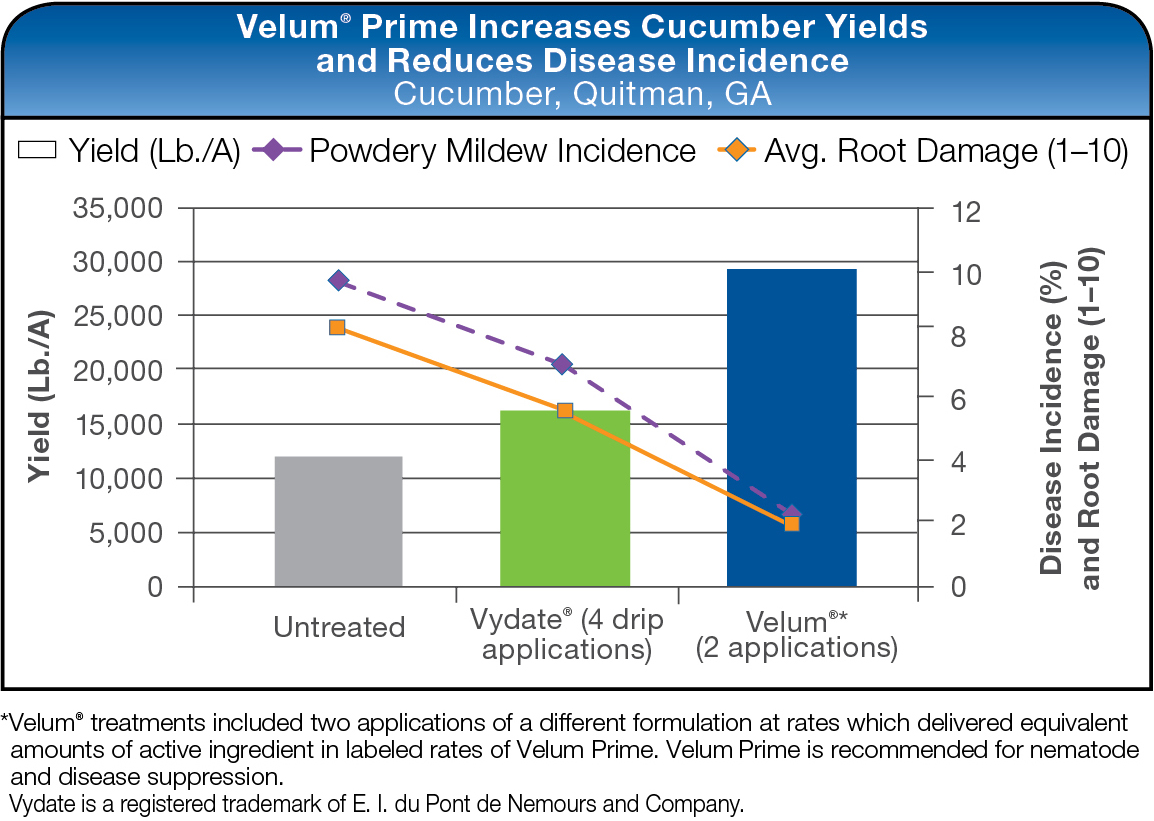 Velum Prime Increases Cucumber Yields and Reduces Disease Incidence