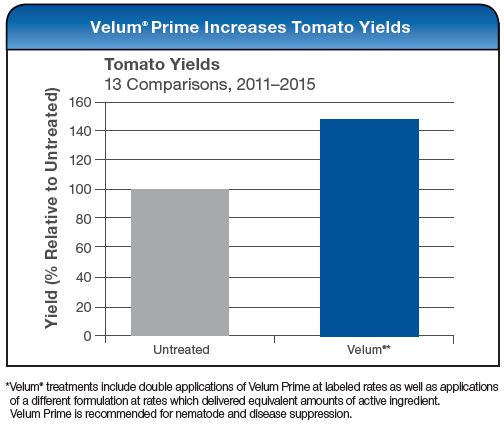Velum Prime Increases Tomato Yields