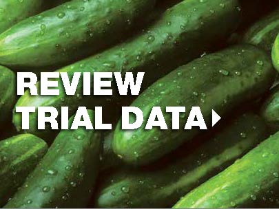 View trial data for cucurbits crops