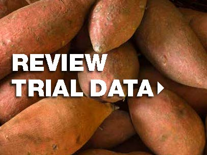 View trial data for sweet potatoe crops