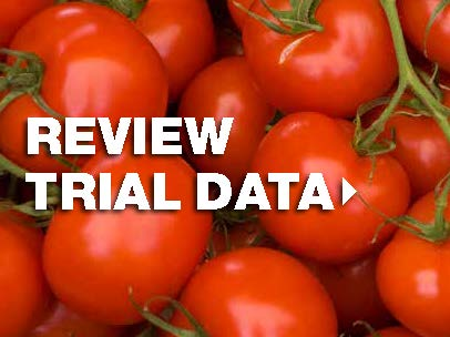 View trial data for tomato crops