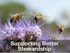 Supporting Better Stewardship