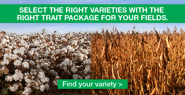 Select the right varieties with the right trait package for your fields