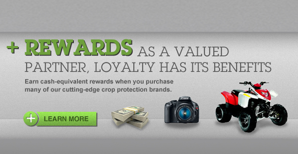 Rewards as a valued partner, loyalty has its benefits
